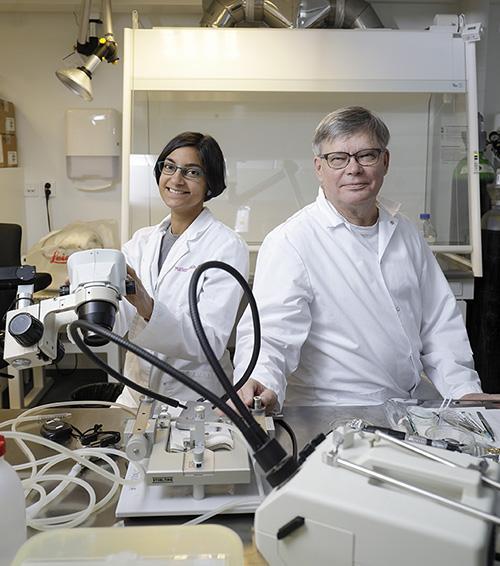 Miriam Nokia ja Markku Penttonen havainnollistavat aivojen pykäläpiikkiä muovipilleistä tehdyn johdon avulla.